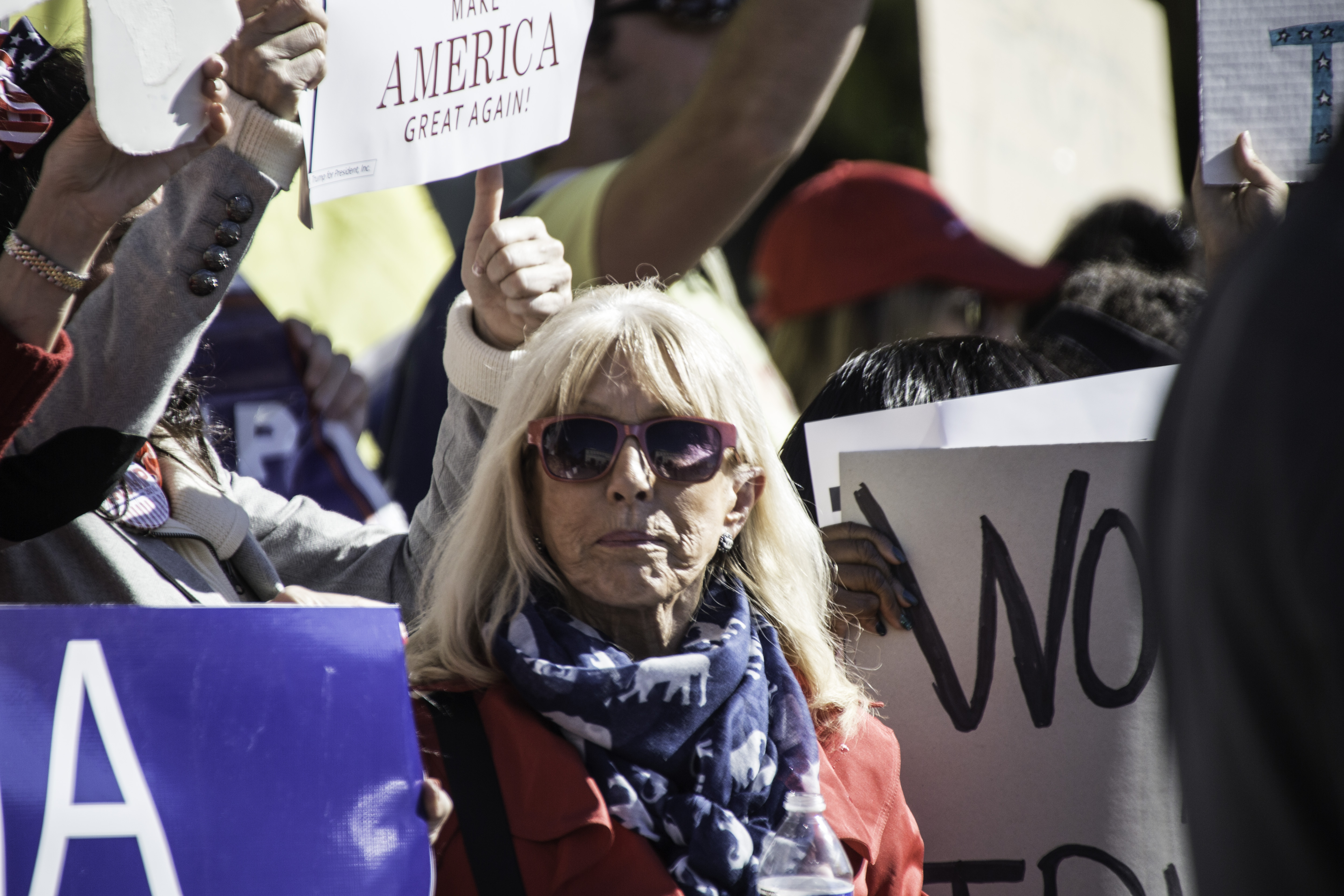 Alice Butler Short who runs the Virginia Women For Trump club was also the co-organizer of the Trump protest rally against the RNC.