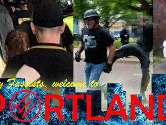 Antifa in Sweden Clash with Nazis During Rally – Idavox